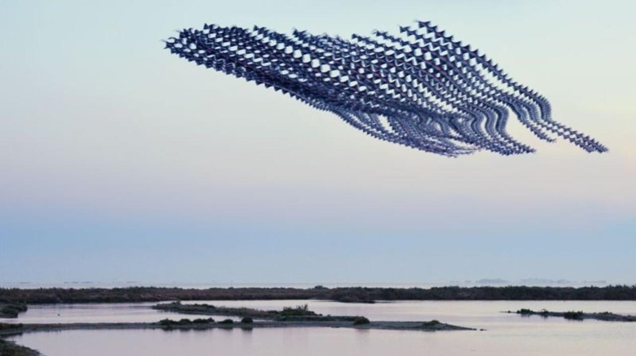 昔の技術で斬新に表現。空飛ぶ鳥の軌跡を写した写真