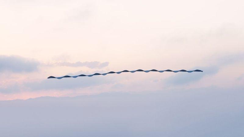 昔の技術で斬新に表現。空飛ぶ鳥の軌跡を写した写真3