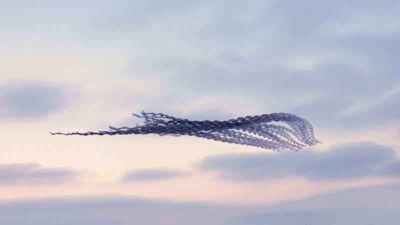 昔の技術で斬新に表現。空飛ぶ鳥の軌跡を写した写真9