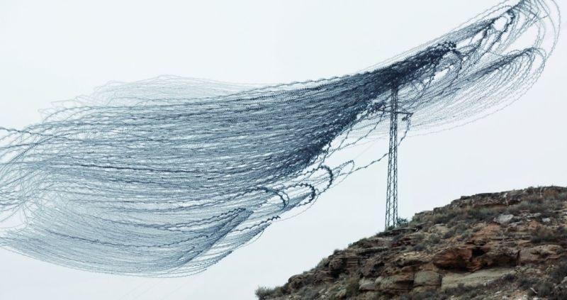 昔の技術で斬新に表現。空飛ぶ鳥の軌跡を写した写真2