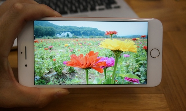 明るい?黄色い? それとも…。iPhone 7の液晶チェック3