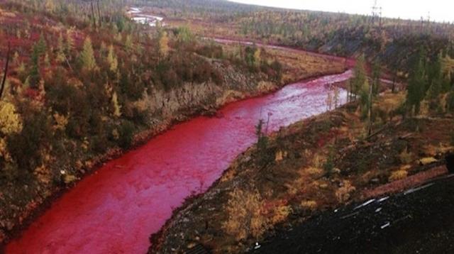 血の色に染まった川、ロシアで大問題に…