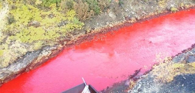 1 血の色に染まった川、ロシアで大問題に…