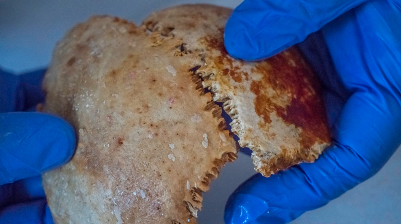 アンティキティラ島の沈没船から人骨 2