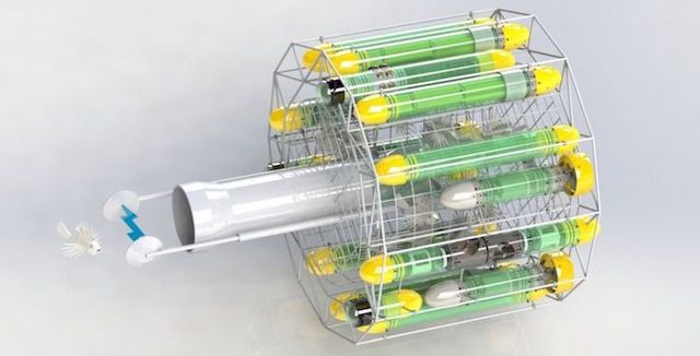 大繁殖したミノカサゴを捕まえるためのロボット ミノカサゴターミネーター