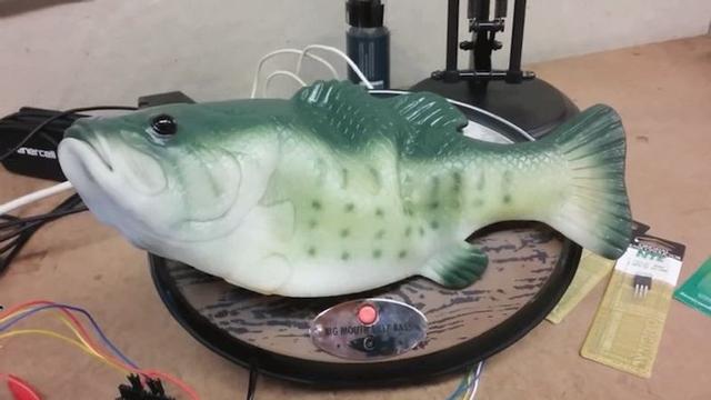 禁断のキメラ。Amazonの音声アシスタント「Alexa」を歌う魚のおもちゃにぶっこんでみた
