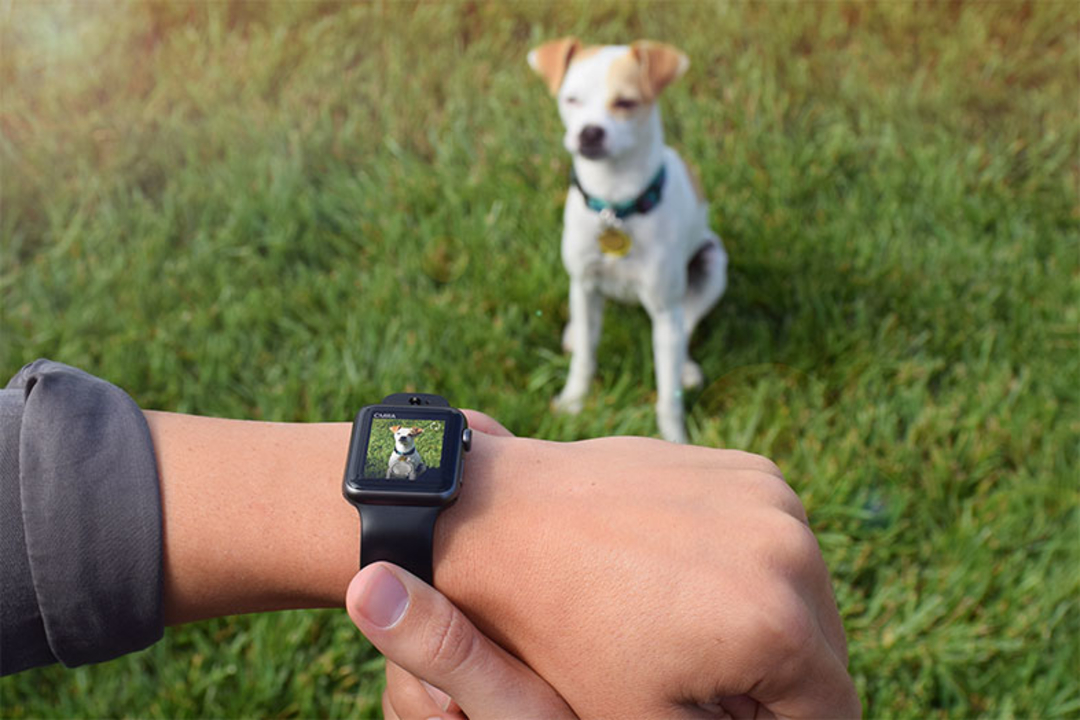Apple WatchにHDカメラを搭載できるバンド「CMRA」登場
