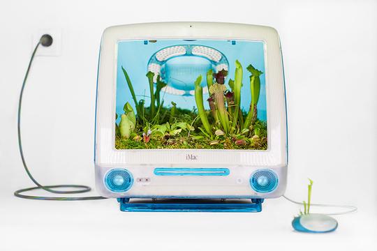 エコへの進化。Macがプランターになります