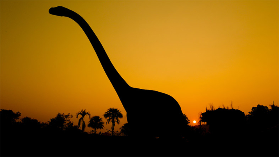 新発見! 恐竜を食べる巨大ネズミがいたことを示す化石が…