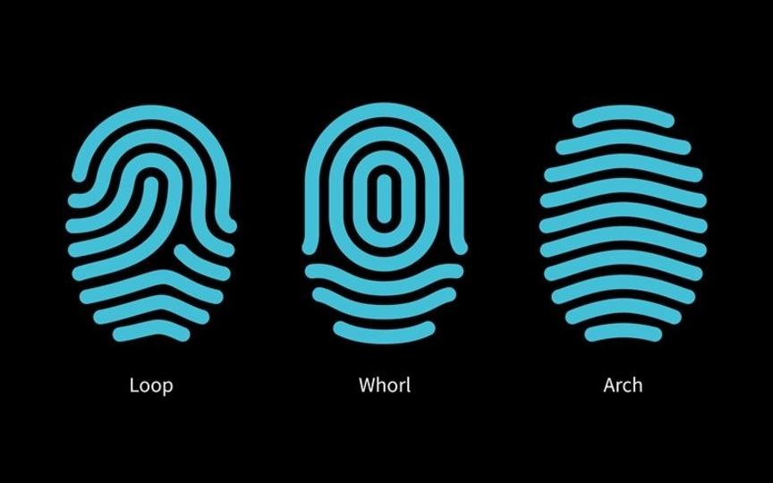 ホームボタンレス・スマホ、実現へ。Synapticsが新しい指紋認証技術を発表