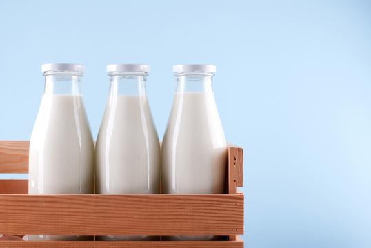 哺乳類のお乳で脂肪分が一番多いの、だーれだ