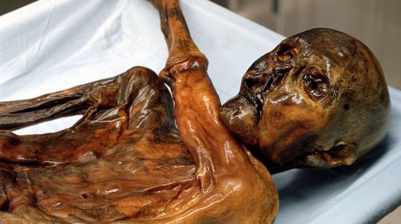 5300年前のミイラ、アイスマンが最後に食べたものは…プロシュート