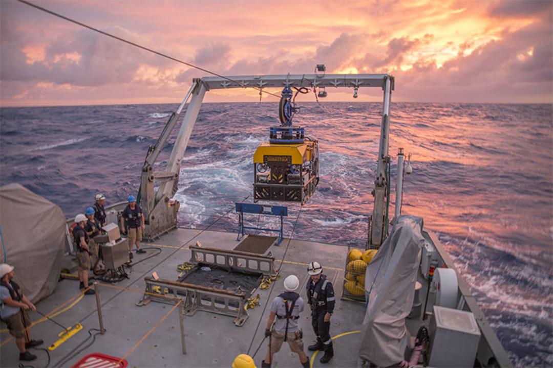 365度の液体が噴き出す前人未到の海底には、生物がうじゃうじゃ棲んでいた