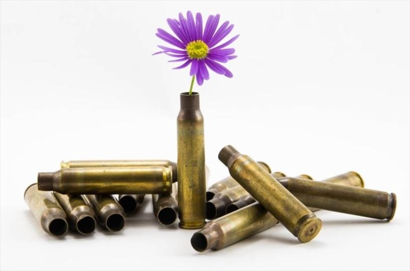 米国防省の考える環境対策、植物の種がはいった銃弾