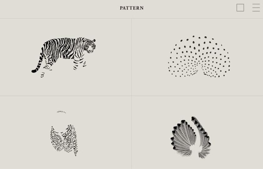 上野動物園にいる「フレンズ」のこと。もっと詳しく知りたくありませんか
