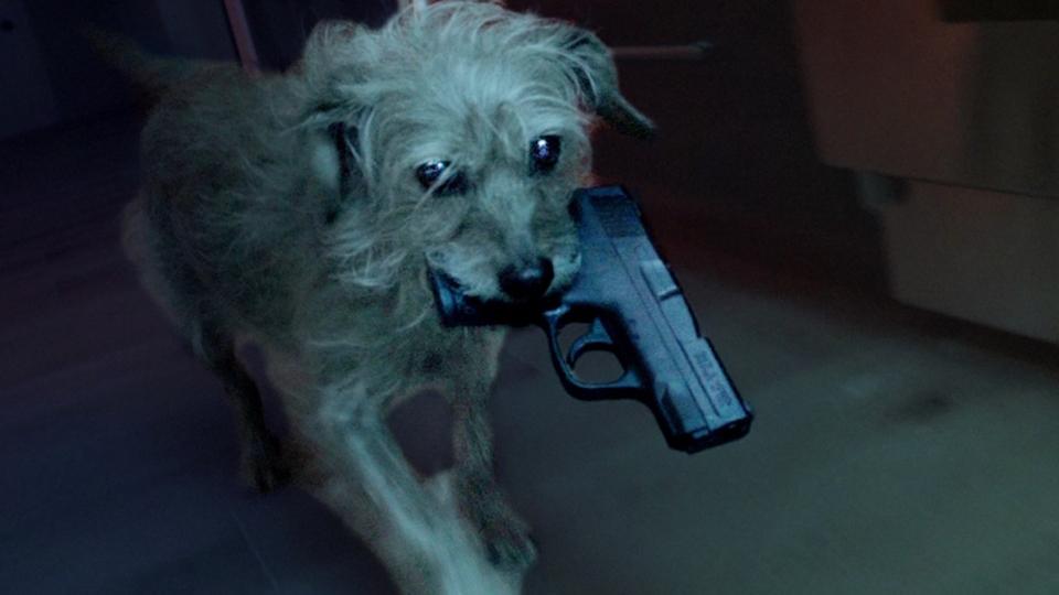 殺された主人のために子犬が復讐に燃える! 短編『ドッグ・ウィック』