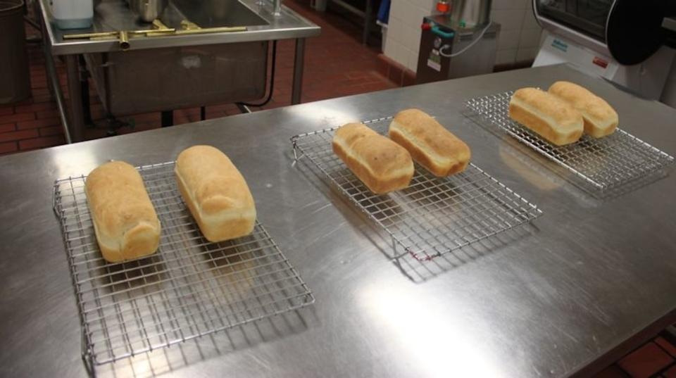 カピカピになった古いパンが、がんを予防?