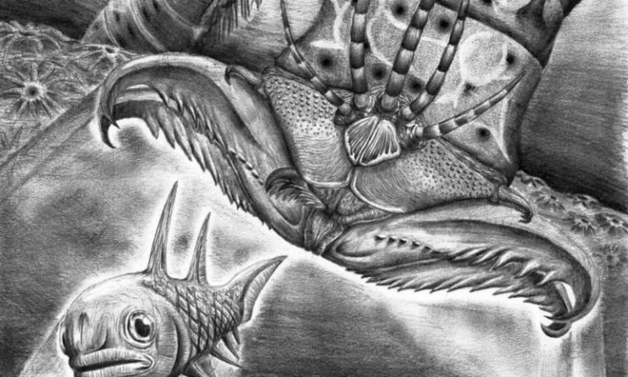 約4億年前の海の生物に超デスメタルな名前がつけられる