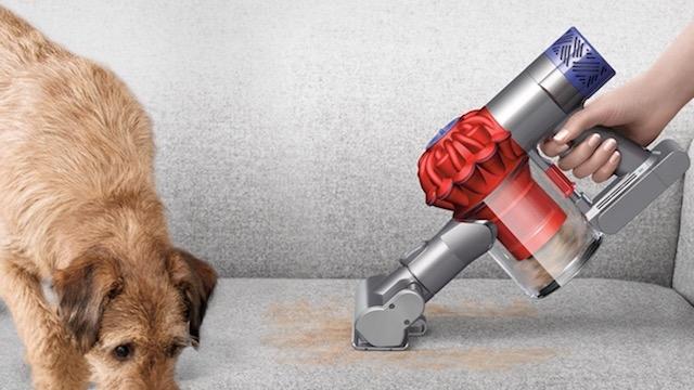 Dyson V6 Top Dog 猫の日割 2