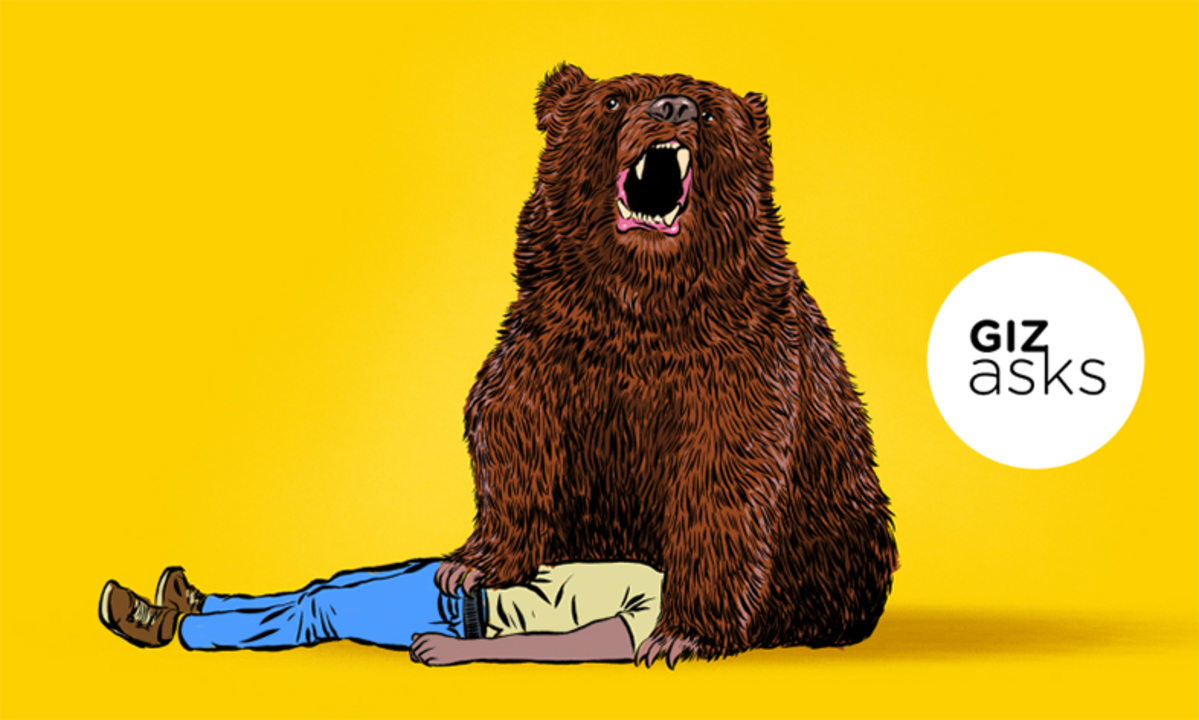 人間とクマは「友達」になれるのか?