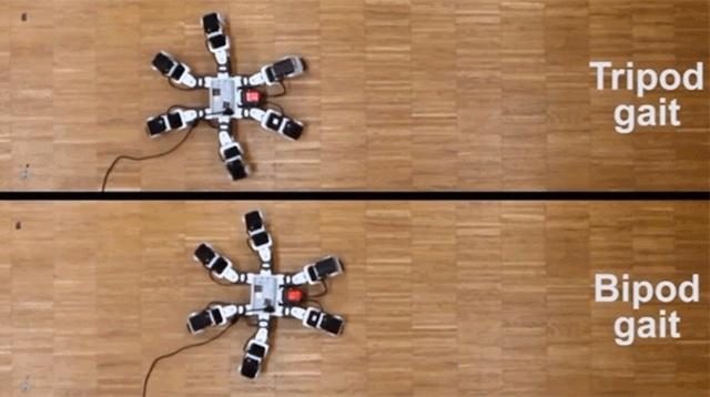 ロボット研究者が自然界の昆虫より優れた6本脚の歩行方法を編み出す