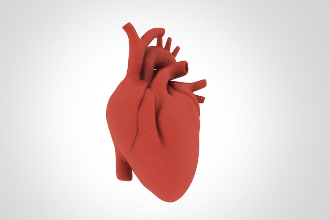 世界で最も健康な心臓を持つチマネ族は1日1万6000歩をあるく。でも食事の7割は炭水化物