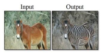 馬はシマウマに、犬は猫に...?フォトショ並みの画像変換「CycleGAN」の腕前はいかに2