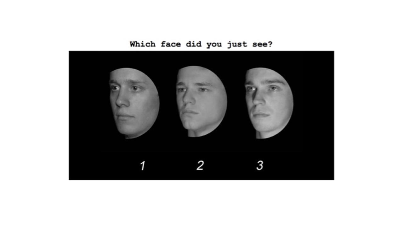 新生活で人の顔が覚えられないアナタへ送る「顔認識能力テスト」:平均スコア80を越えられるか