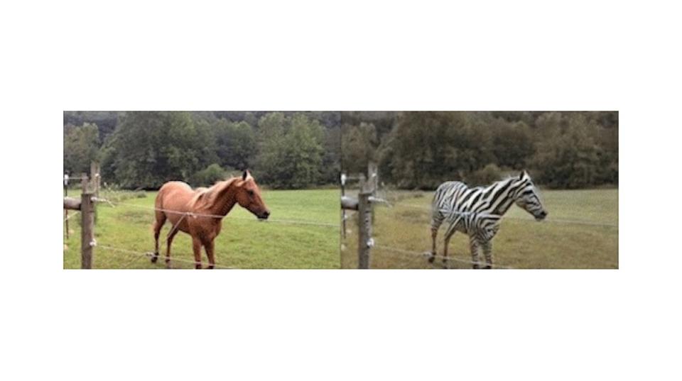 馬はシマウマに、犬は猫に...? フォトショ並みの画像変換「CycleGAN」の腕前はいかに