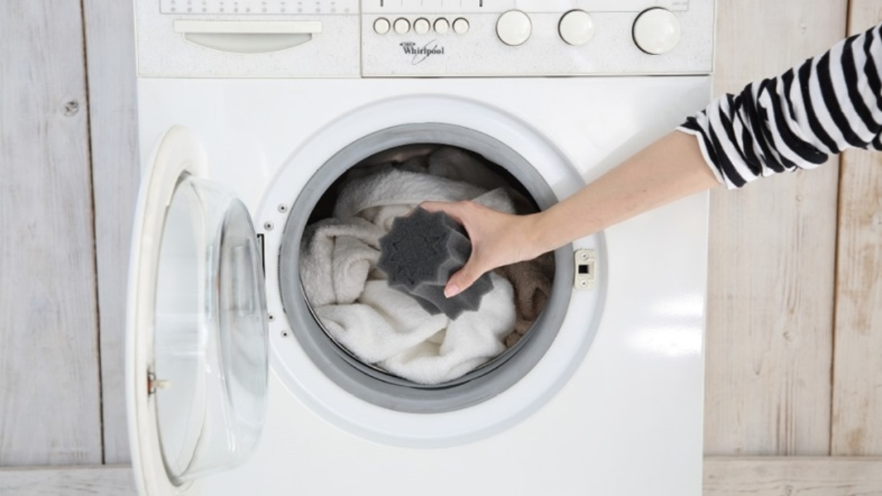 洗濯機に入れるだけでペットの抜け毛をからめとる「FREE LAUNDRY」