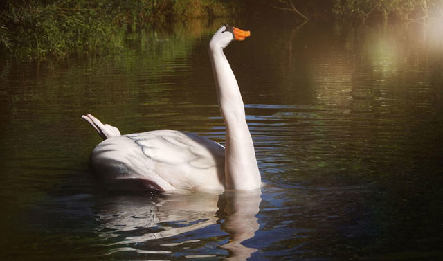 2 この動物、アレで表現されているんです。人間と自然とアートが融合した世界
