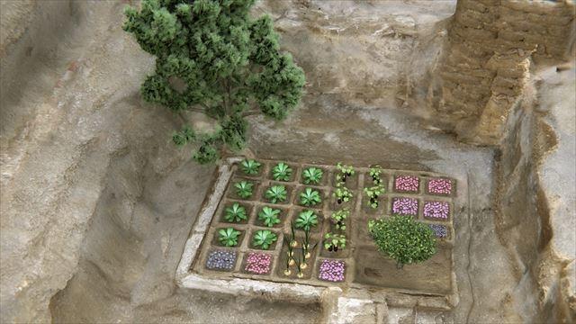 20170515_egypt_garden_r.jpg