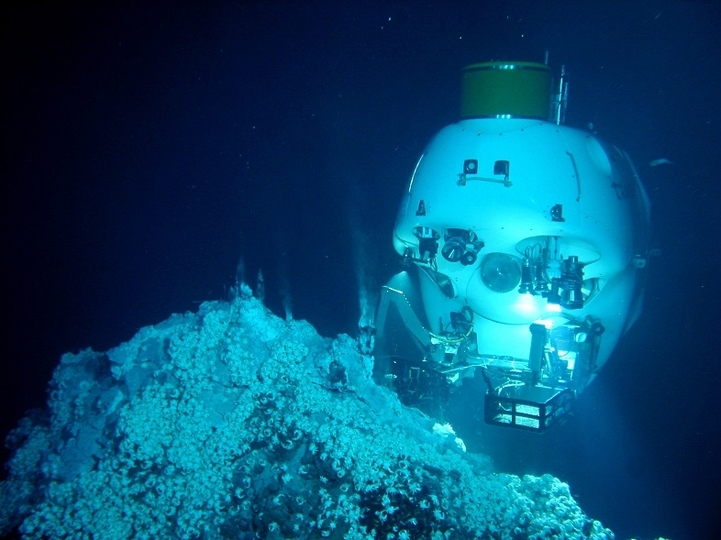 ヘンな生き物、いっぱい。日本が誇る潜水調査船「しんかい6500」が捉えた海底世界とは