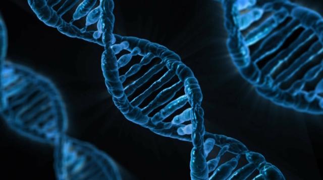 ハンチントン病の治療方法を発見?CRISPR技術で症状改善の可能性