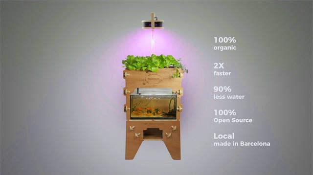 お魚×水耕栽培をもっと拡張。オープンソース型アクアポニックス「Aquapioneers」