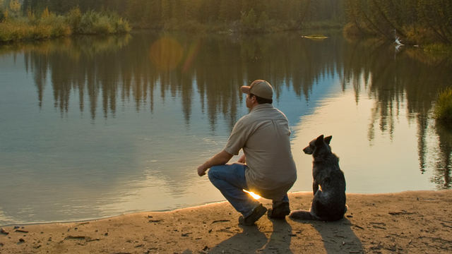 犬と暮らせるのは、奇跡なのかもしれない
