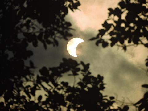 8月21日に大規模な日食を迎えるアメリカ。悪質な日食メガネが米Amazonで出回り払い戻し