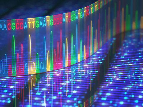 究極のプライバシー・遺伝子情報を暗号化して守る「ゲノムクローキング」