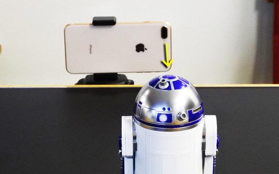 決まり手はちょい寄り切り。iPhone 8 Plusはボケマクロにちょい強め