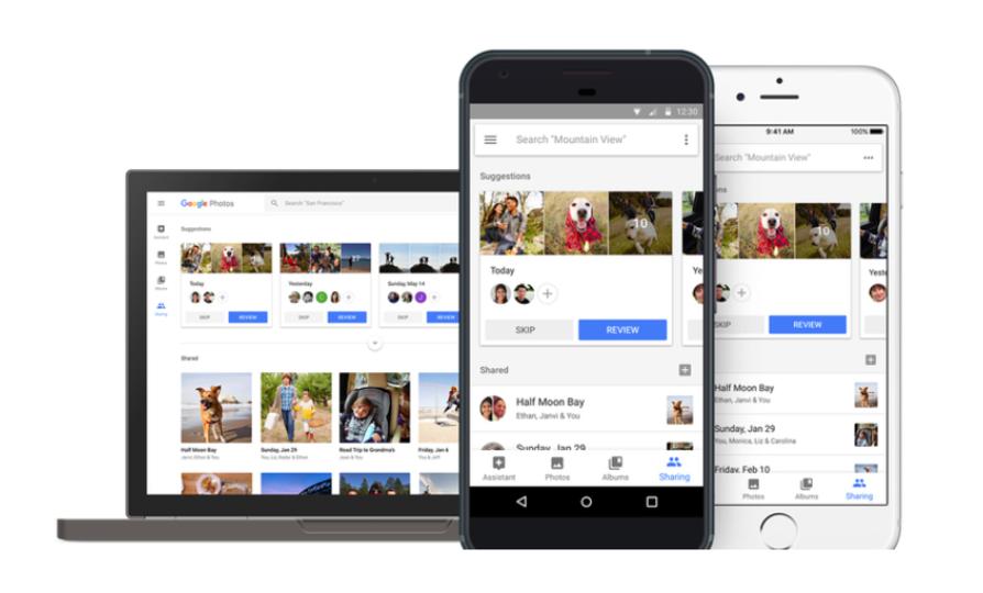 「Googleフォト」が人物だけでなくペットまで認識してくれるように!