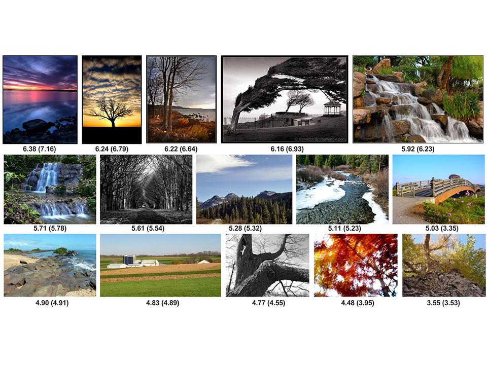 「綺麗」という感情、ついに数値化される。GoogleがAIを使った画像評価技術「NIMA」を発表