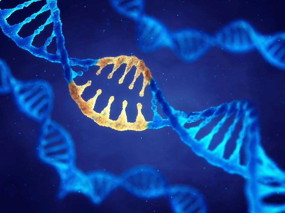 遺伝子編集技術CRISPRのエラーが機械学習で予測できるように