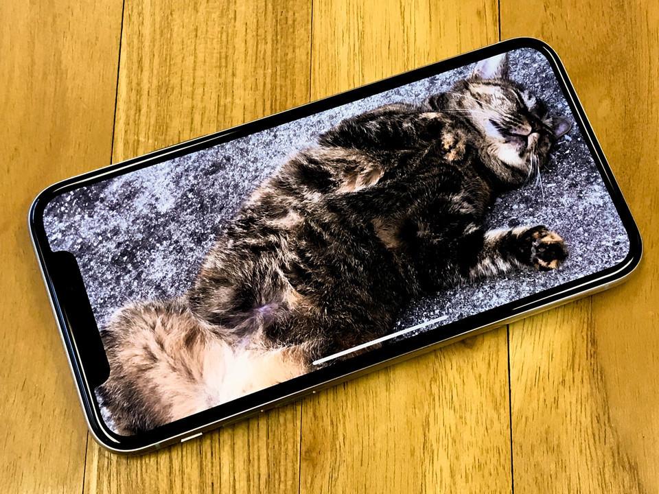 シャープ、iPhone用有機ELディスプレイの契約獲得目指す?