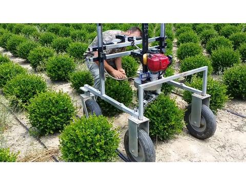 ずっと見ていたくなる…。木々をまるまるっこく整える庭師ロボ