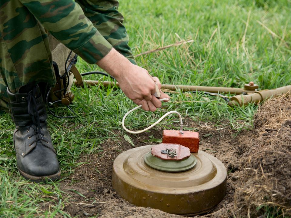 地雷は除去するよりも爆破させたほうが環境に良いことが判明