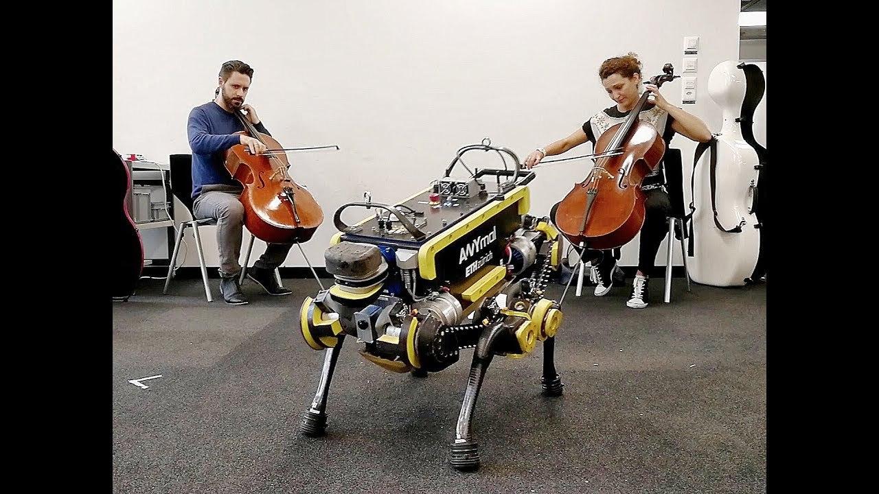あれ、ちょっとかわいい…? 音楽に合わせてダンスする犬型救助ロボット「ANYmal 」
