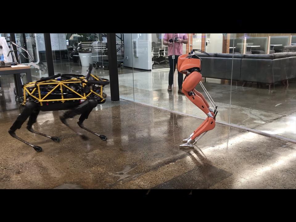 新しいともだち? ダチョウの脚型ロボ「CASSIE」がボストン・ダイナミクスの犬型ロボ「Spot」と初対面でダンス