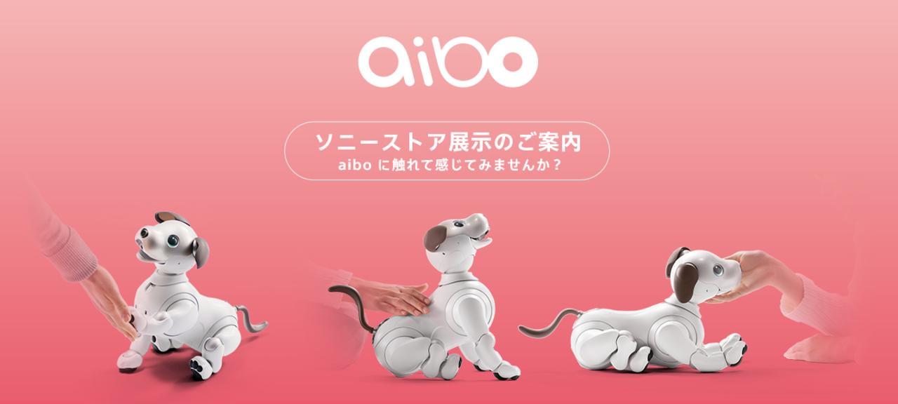4月11日、一日限定! ソニーストア各店でaiboの抽選販売があるよ!