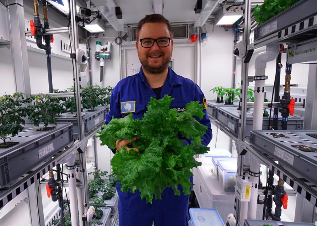 南極大陸のグリーンハウス(日光・土壌なし)で野菜を初収穫。惑星移住の第一歩になりそう!