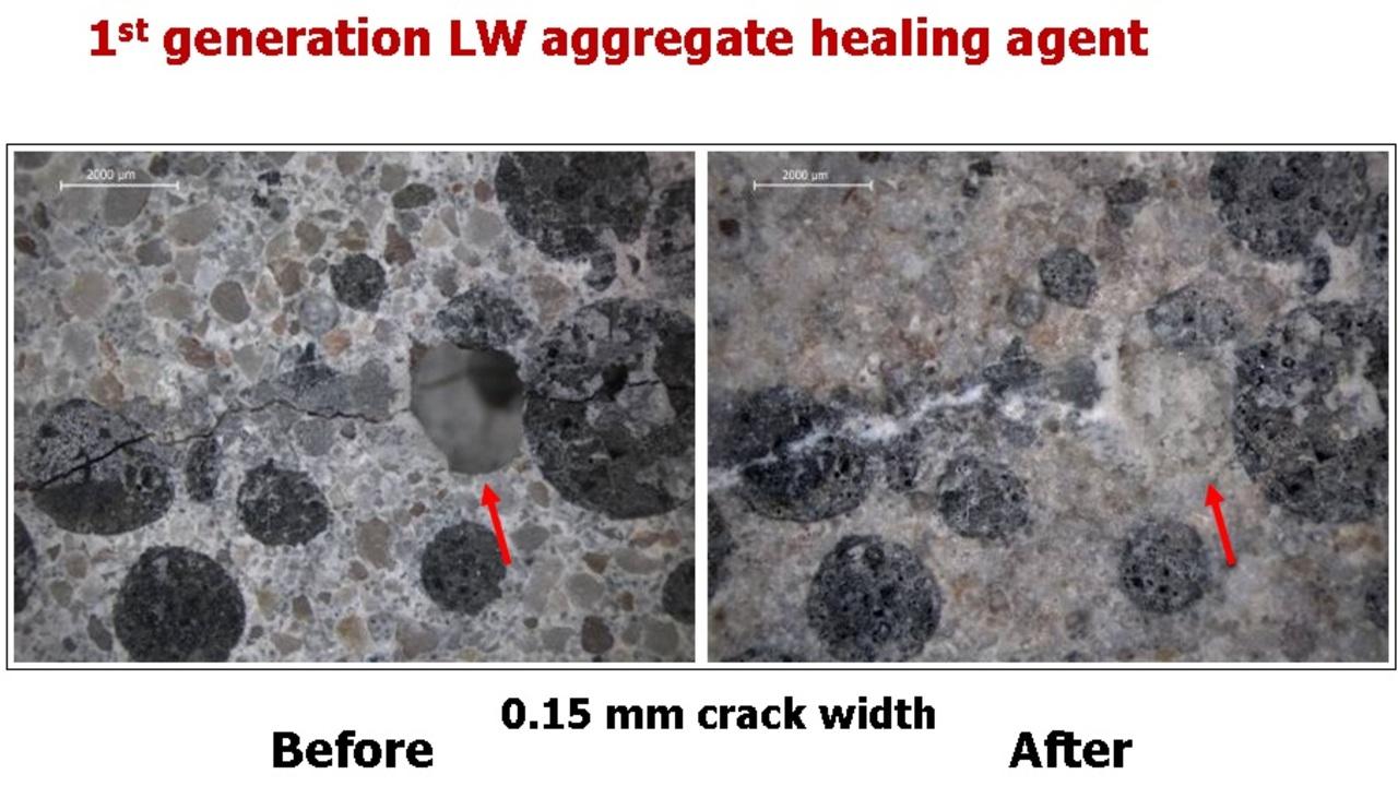 目覚めよバクテリア。ヒビ割れを自己修復するコンクリート補修材が日本に上陸
